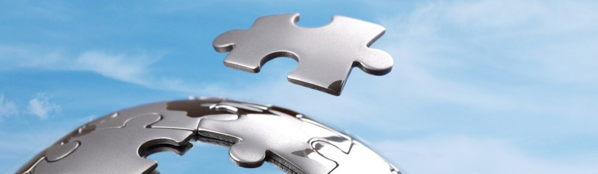 Digital Consulting Experts - the missing puzzle piece for your expansion